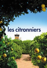 Les citronniers