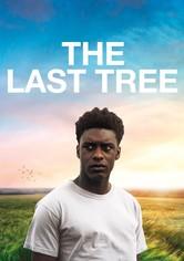 Az utolsó fa
