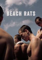 바닷가의 쥐들