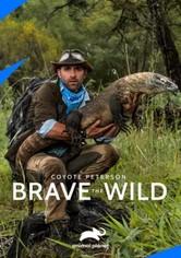 Coyote Peterson - Brave The Wild
