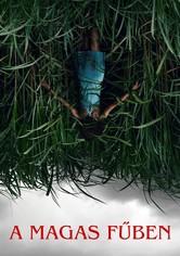 A magas fűben