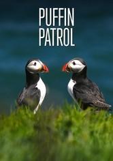 Puffin Patrol