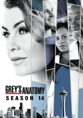 Grey's Anatomy Stagione 14