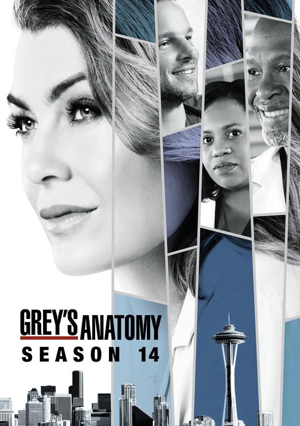 Anatomía de Grey Temporada 14 poster