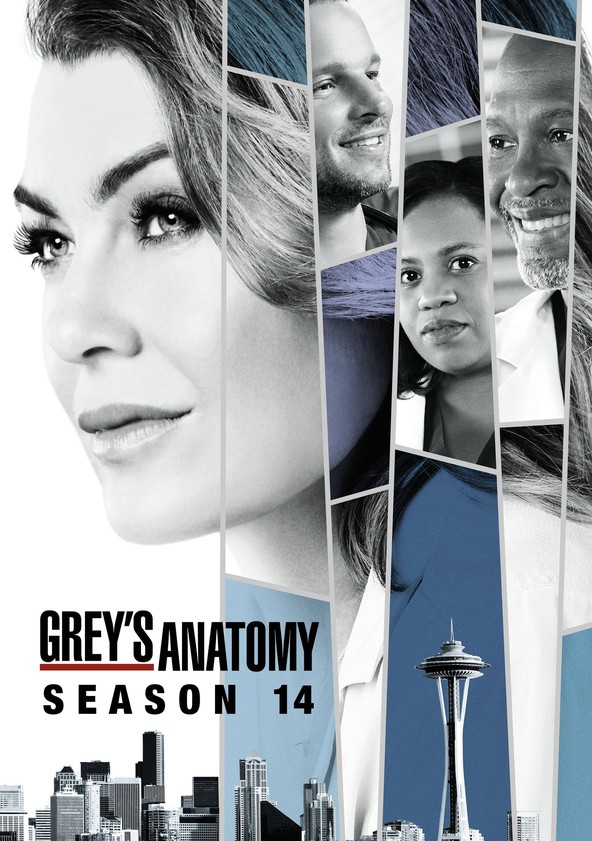Grey's Anatomy Season 14 poster