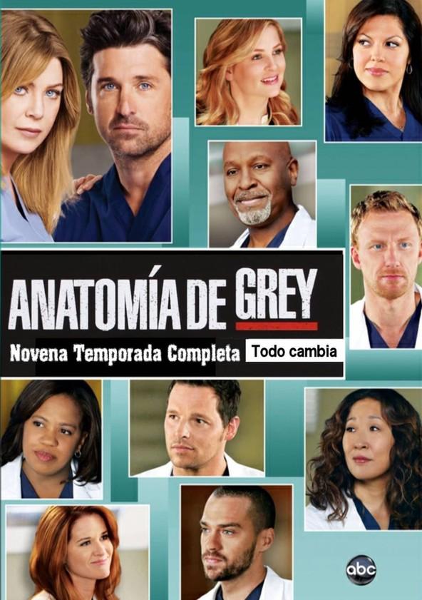 Ver Anatomia De Grey