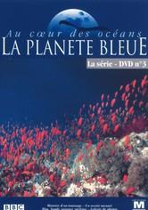 Au coeur des océans - La Planète bleue
