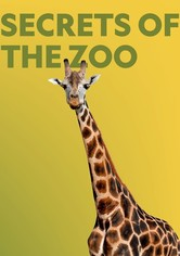 Secrets of the Zoo