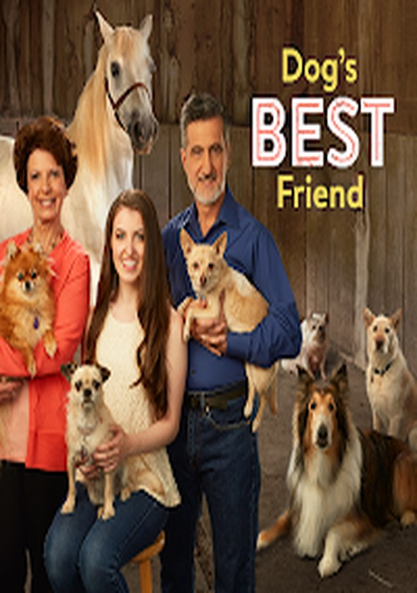 Dog's Best Friend
