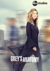 Greyn anatomia