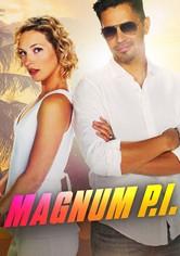 Magnum Private Investigator