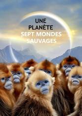 Une planète, sept mondes sauvages