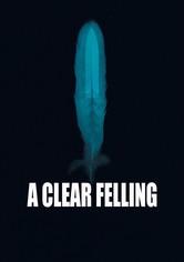 A Clear Felling
