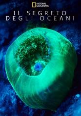 Il segreto degli oceani