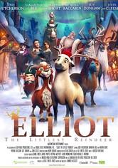 Elliot, das kleinste Rentier