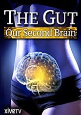The Gut: Our Second Brain