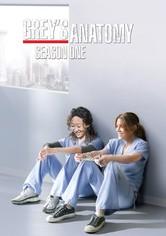 Anatomía de Grey Temporada 1