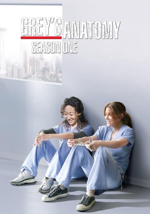 Anatomía de Grey Temporada 1 poster