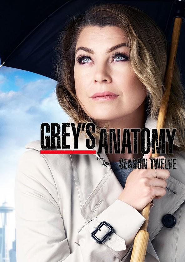 Anatomía de Grey Temporada 12 poster
