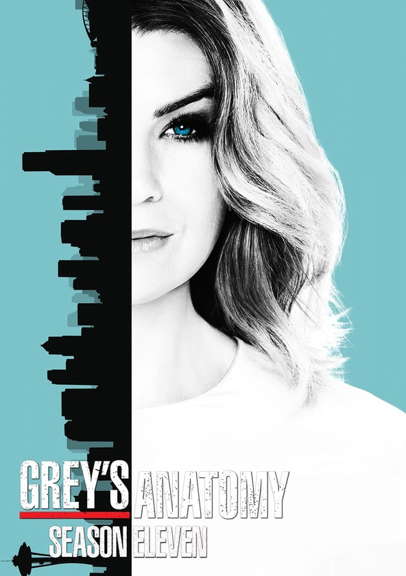Grey's Anatomy Season 11 poster