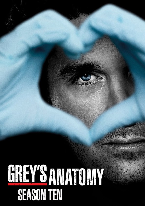 Greys Anatomy Season 10 Watch Episodes Streaming Online
