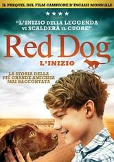 Red Dog: L'inizio