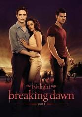 Twilight - Aamunkoi: Osa 1