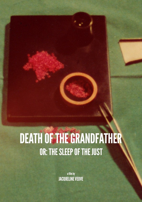 Death of the Grandfather or: The Sleep of the Just poster