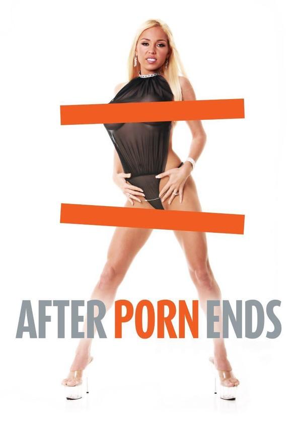 After Porn Ends poster