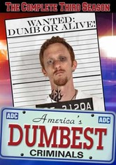 America's Dumbest Criminals Season 3