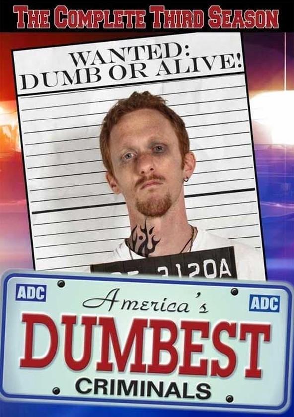 America's Dumbest Criminals Season 3 poster