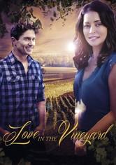 Love in the Vineyard