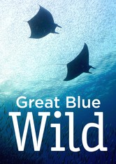 Great Blue Wild