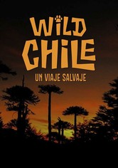 Wild Chile, Un Viaje Salvaje