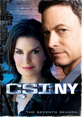 csi ny season 8 123movies