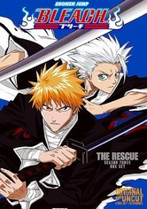 download bleach season 13