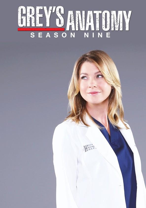 Anatomía de Grey Temporada 9 poster