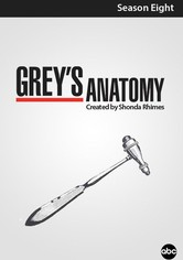 Grey's Anatomy Staffel 08