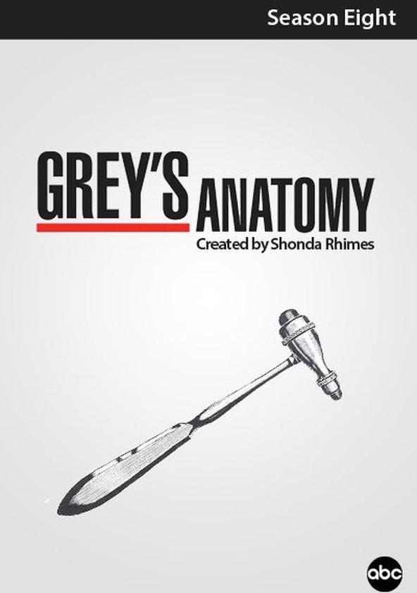 Anatomía de Grey Temporada 8 poster
