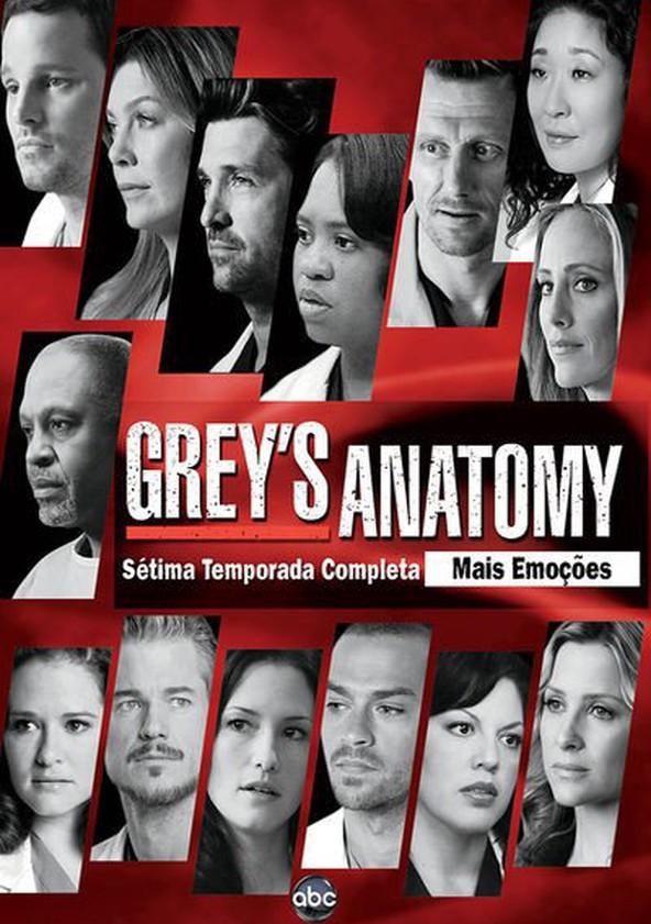 Anatomia de Grey 7.ª Temporada poster
