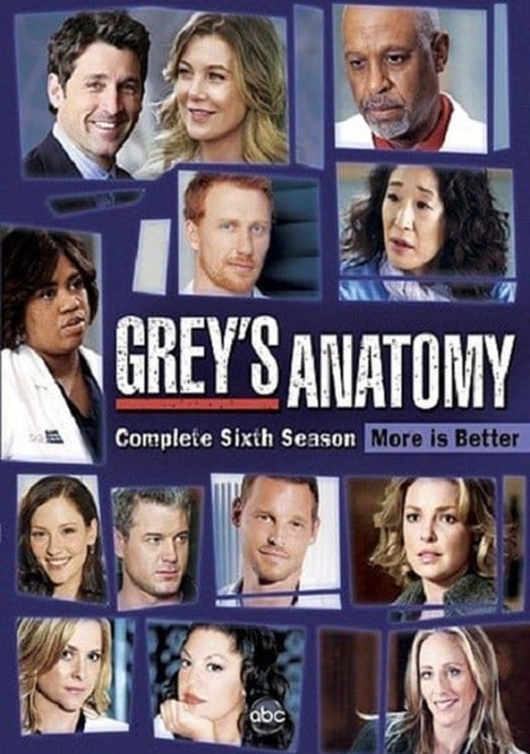 watch greys anatomy season 6 online free