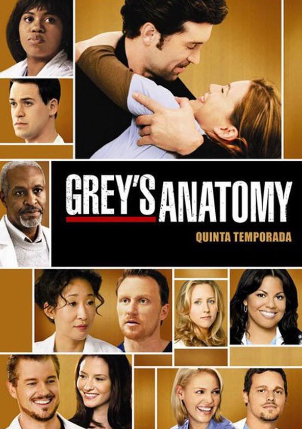 Anatomia de Grey 5.ª Temporada poster