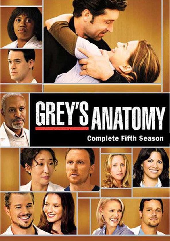 Anatomía de Grey temporada 5 - Ver todos los episodios online