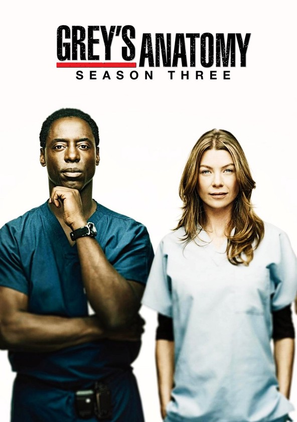 Anatomía de Grey Temporada 3 poster