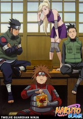 Los doce guardianes ninja