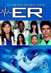 Staffel 14