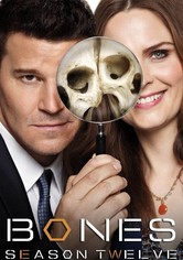 Bones Season 12 - The Final Chapter