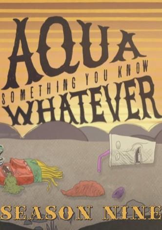 Aqua Something You Know Whatever