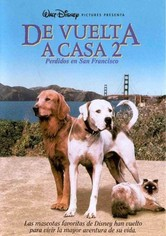 De vuelta a casa 2: Perdidos en San Francisco