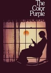 Purpurová barva